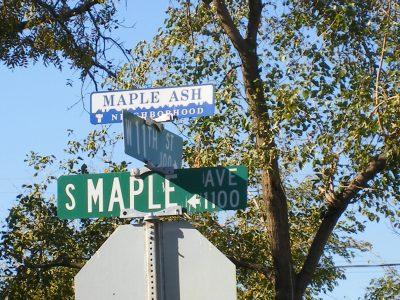 MapleAsh_2735